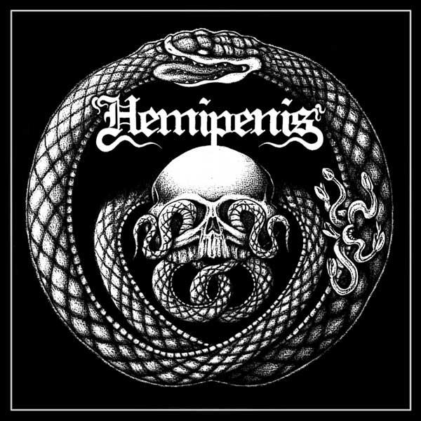 Hemipenis